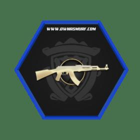 MG1 Rank Single Medal Account