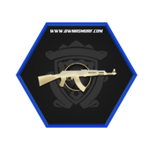 Buy MG1 Prime Account | Buy CSGO MG1 Prime Account