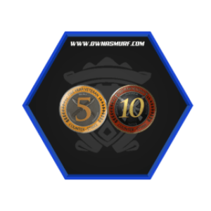 Ranked 10 Year 5 Year Veteran Coin