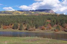 Pagosa View