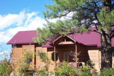 North Pagosa Springs Home