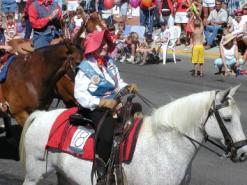 pagosa springs parade horse