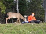 Pagosa springs deer hunting