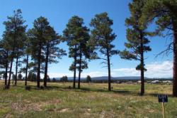 Capstone Village land ranch