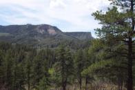 Elk Park Scenery