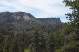 National Forest within Elk Park