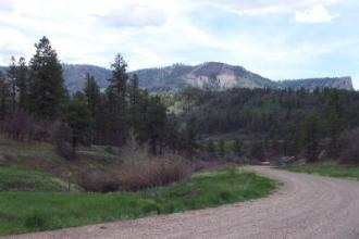 Beautiful Elk Park Meadows
