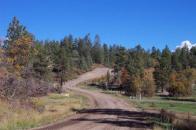 Piedra Estates Road