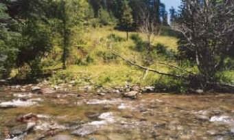 rito blanco creek