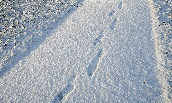 Clear paths needed for students