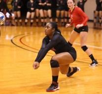 Volleyball finds success in regular season