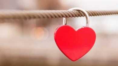 Потерять все самое дорогое, чтобы обрести любовь и покой. Читайте вдохновляющую историю