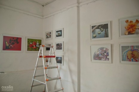 installing the photos