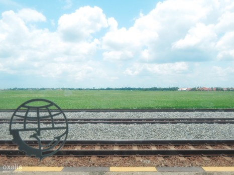 somewhere (over the rice fields)
