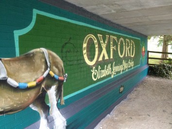 Oxford Canal Mural Painting Days (107)