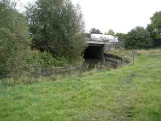 02/10/09 Seacourt Stream below Wytham: note bank cut back on far side; desilted