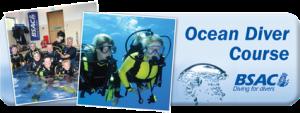 Ocean Diver Course
