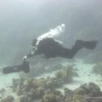 red-sea-diving_280112_0187.jpg