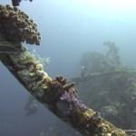 red-sea-diving_290112_0102.jpg