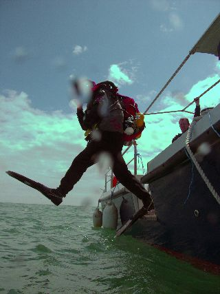 1st Ever Dive From Endeavour