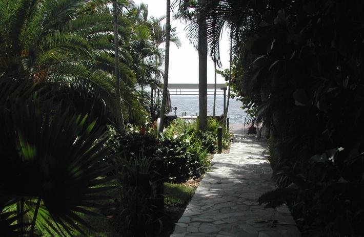 Walk path looking East