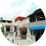 Coconut Grove - Grove Properties