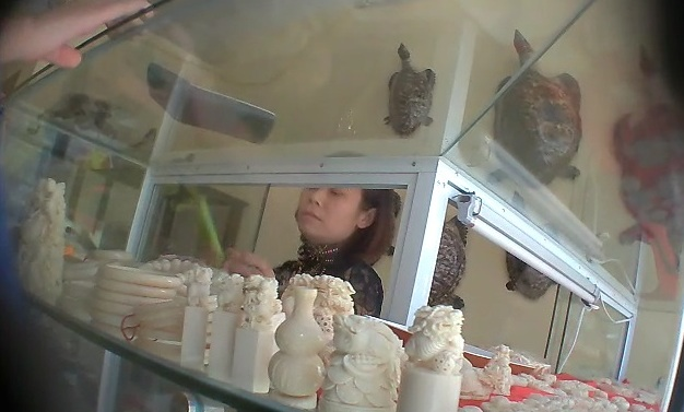 Retail stores with wildlife products showcased on glass shelves are waiting for Chinese customers
