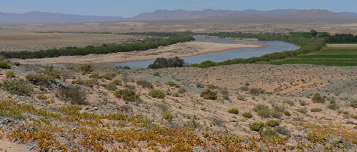 Areas around the Orange River are among the regions that could become suitable for malaria vectors as a result of climate change and other environmental factors. Photo: Rehana Dada