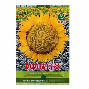 Touchhealthy supply cold-resistant fresh sunflower seeds 40gram per bags