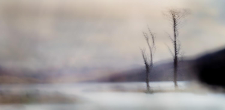 Lonesome Pines II