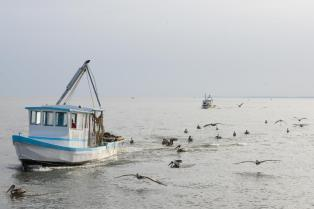 Les pêcheurs de Livingstone (Guatemala) rentrent au petit matin