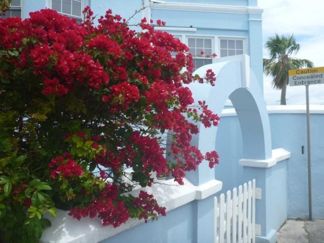 22-les-couleurs-des-bermudes