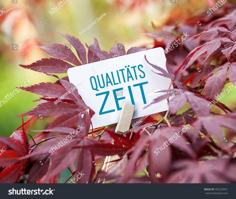 German Word Quality Time Fanmaple Tree Stock Photo (Edit Now inside Maple Tree In German