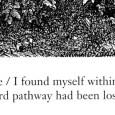 I Found Myself Within a Dark Forest (detail 02)