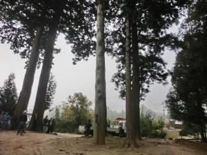 木休め祭(御射山神社)1