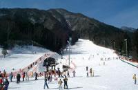 初級者・中級者向けのバラエティー豊かなゲレンデとチビッコ向けのソリコースまで。 ≫ 駒ヶ根高原スキー場