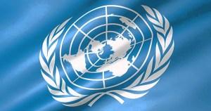 Internship 2019 at UNDP