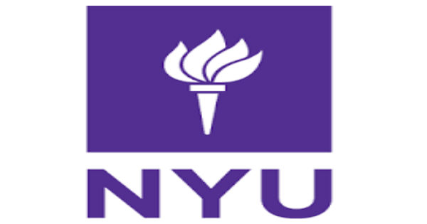 Lecturer and Programme Manager for Business, Political Economy and Entrepreneurship at New York University,London
