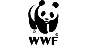 Coordinator, Private Sector Engagement at WWF