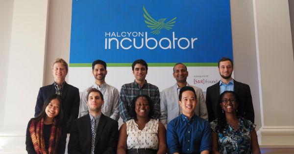 Halcyon Incubator Fellowship
