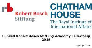 Funded Robert Bosch Stiftung Academy Fellowship 2019