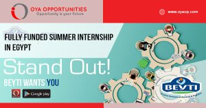 Fully Funded Summer Internship in Egypt