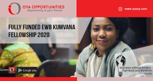 Fully Funded EWB Kumvana Fellowship 2020