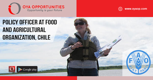 Jobs at FAO in Chile