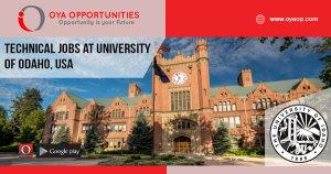 Technical jobs at University of Odaho, USA