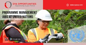 Programme Management Jobs at United Nations, Canada