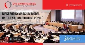 Birkerød Gymnasium Model United Nation (BIGMUN) 2020