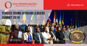 Funded Young African Leaders Summit 2019