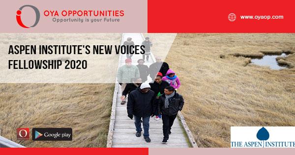 Aspen Institute's New Voices Fellowship 2020