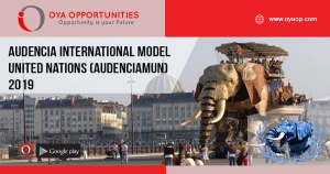 Audencia International Model United Nations (AudenciaMUN) 2019